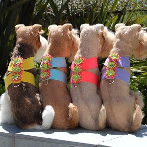 Sea Urchin Swarovski Crystal Dog Harness - 20 Colors