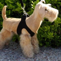 Simplicity Ultrasuede Step-In Dog Harness- Black
