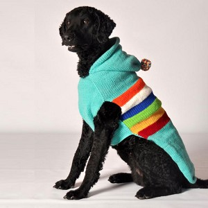 Ski Bum Dog Sweater by Chilly Dog
