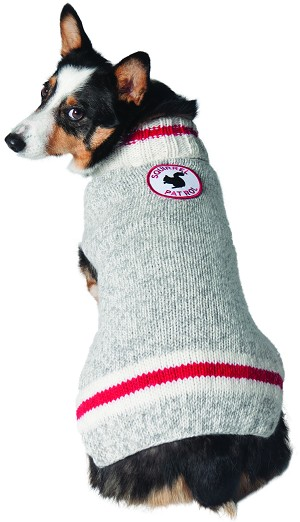 Squirrel Patrol Patch Sweater by Chilly Dog