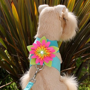 Island Flower Crystal Dog Harness- 12 Colors