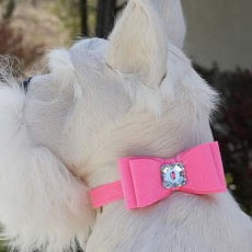Jumbo Big Bow Collar Slider by Susan Lanci- 13 Colors