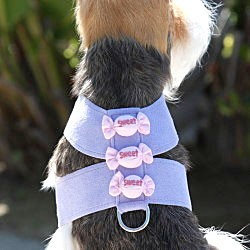 Susan Lanci Sweet Treats Dog Harness - 20 Colors
