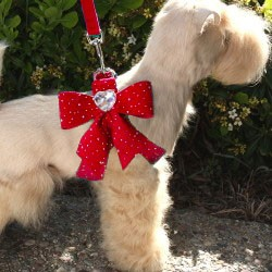 Tail Bow Heart Swarovski Crystal Dog Harness- Stardust Red