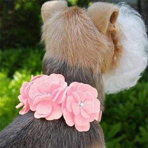 Tinkie's Garden Dog Collar by Susan Lanci - 20 Colors