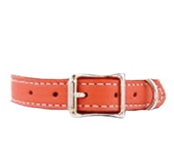 Tuscany Italian Leather Dog Collar - Coral Orange
