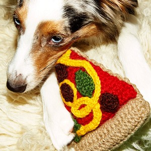 Fair-Trade Handknit Dog Toy- Pizza