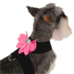 Water Lily Two-Tone Dog Harness by Susan Lanci- Black and Perfect Pink