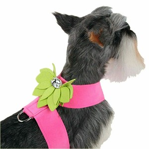 Water Lily Two-Tone Dog Harness by Susan Lanci- Perfect Pink and Kiwi